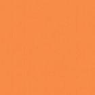 5187 Калейдоскоп Рыжий
