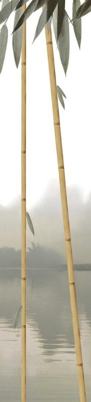 Бамбук ПН94