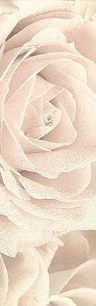 12056/3F Роза